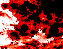 Blood splatter. Background with dominating red black and white colors Stock Image