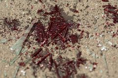 Blood stain on the road. Glass from a car accident covered in blood Royalty Free Stock Photos