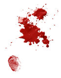 Blood stains and fingerprint. Splatter stains of dripping red blood and a thumb fingerprint stock image