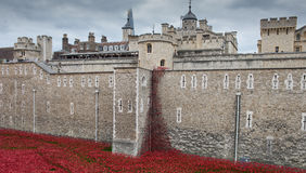 Blood swept lands and seas of blood. Poppy display at the tower of London to mark the centenary of world war 1 royalty free stock photo