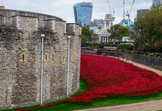 Blood swept lands and seas of blood. Poppy display at the tower of London to mark the centenary of world war 1 stock image