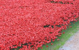 Blood Swept Lands and Seas of Red Poppies. London, United Kingdom - 28th September 2014: Almost 900,000 ceramic poppies are installed at The Tower of London to Royalty Free Stock Photo