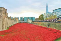 Blood Swept Lands and Seas of Red Poppies. London, United Kingdom - 28th September 2014: Almost 900,000 ceramic poppies are installed at The Tower of London to Stock Images