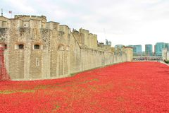 Blood Swept Lands and Seas of Red Poppies. London, United Kingdom - 28th September 2014: Almost 900,000 ceramic poppies are installed at The Tower of London to Stock Photography