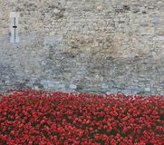 Blood Swept Lands and Seas of Red Poppies. London, United Kingdom - 28th September 2014: Almost 900,000 ceramic poppies are installed at The Tower of London to Stock Photo
