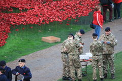 Blood Swept Lands and Seas of Red Poppies. London, United Kingdom - 28th September 2014: Almost 900,000 ceramic poppies are installed at The Tower of London to Royalty Free Stock Photography