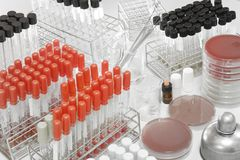 Blood testing in laboratory Stock Image