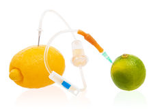 Blood transfusion abstract allegory concept. Transfusion juice from lemon to lime. Isolated on white Stock Images