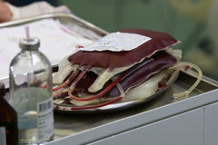 Blood transfusion. Several bags of donor blood in a bowl before the transfusion during the surgery Stock Photography