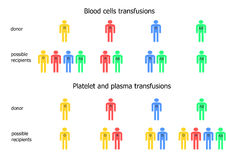 Blood transfusions scheme Stock Photography