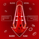 Blood Vector Image. Beautiful vector illustration of blood pressure infographic. Abstract medicine concept. Useful for poster, indographics, placard, leaflet Royalty Free Stock Image