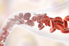 Blood vessel with erythrocytes and leukocytes Stock Photos