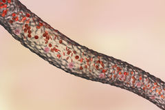 Blood vessel with flowing blood cells. Side view, 3D illustration Stock Photos