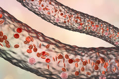 Blood vessel with flowing blood cells. Side view, 3D illustration Stock Photography