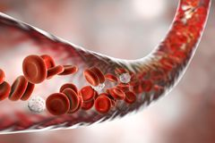 Blood vessel with flowing erythrocytes and leukocytes Stock Photo