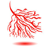 Blood vessels concept. Stock Photos