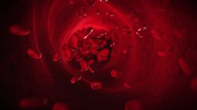 The bloodflow stock footage