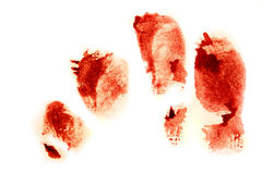 Bloodly red finger prints Royalty Free Stock Image