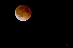Bloodmoon lunar eclipse Royalty Free Stock Images