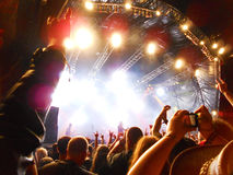 Bloodstock το βράδυ Στοκ φωτογραφίες με δικαίωμα ελεύθερης χρήσης