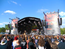 Bloodstock Stock Photography