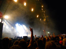 Bloodstock Royalty Free Stock Photography