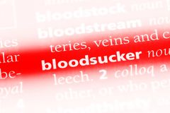 Bloodsucker. Word in a dictionary.  concept Royalty Free Stock Photo