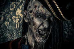 Bloodthirsty corsair. Horror novel character. Aggressive angry pirate, risen from the dead. Halloween Royalty Free Stock Image