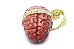 Bloody Brain with Tape on White. A bloody brain, on a white background, with a measuring tape around it. Check out the other images in this series stock image