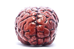 Bloody Brain on White Stock Photo