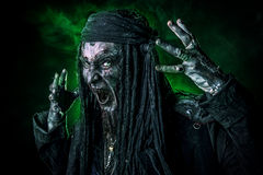 Bloody buccaneer. Horror novel character. Aggressive angry pirate, risen from the dead. Halloween stock image