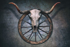 Bloody Bull Skull Stock Images