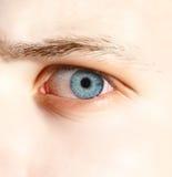 Bloody eye Stock Image