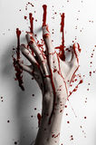 Bloody halloween theme: bloody hand print on a white leaves bloody wall Stock Photography