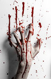 Bloody halloween theme: bloody hand print on a white leaves bloody wall Royalty Free Stock Image