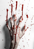 Bloody halloween theme: bloody hand print on a white leaves bloody wall Royalty Free Stock Photo