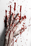 Bloody halloween theme: bloody hand print on a white leaves bloody wall. Studio Stock Photo