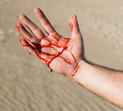 Bloody Hand. A hand bleeding in the middle of the desert Royalty Free Stock Image