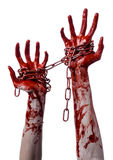 Bloody hand holding chain, bloody chain, halloween theme, white background, isolated Stock Images