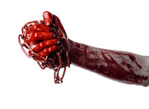 Bloody hand holding chain, bloody chain, halloween theme, white background, isolated Stock Photo