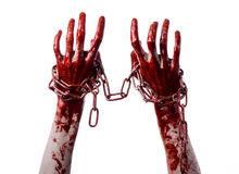 Bloody hand holding chain, bloody chain, halloween theme, white background, isolated Royalty Free Stock Photo