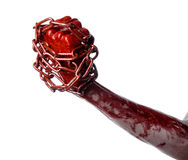 Bloody hand holding chain, bloody chain, halloween theme, white background, isolated Royalty Free Stock Image