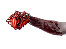 Bloody hand holding chain, bloody chain, halloween theme, white background, isolated Royalty Free Stock Photography