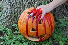 Bloody Hand and Pumpkin. A bloody hand with long black fingernails on a pumpkin Stock Image