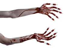 Bloody hand with syringe on the fingers, toes syringes, hand syringes, horrible bloody hand, halloween theme, zombie doctor, white. Background, isolated studio Royalty Free Stock Photography