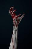 Bloody hand zombie demon. Studio Royalty Free Stock Photo