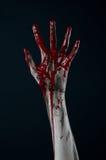 Bloody hand zombie demon. Studio Stock Image