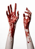 Bloody hands on a white background, zombie, demon, maniac, isolated Royalty Free Stock Photo