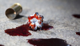 Bloody hollow point Stock Photo