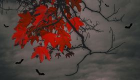 Bloody leaves and bats. Against the backdrop of a gloomy evening sky Stock Image